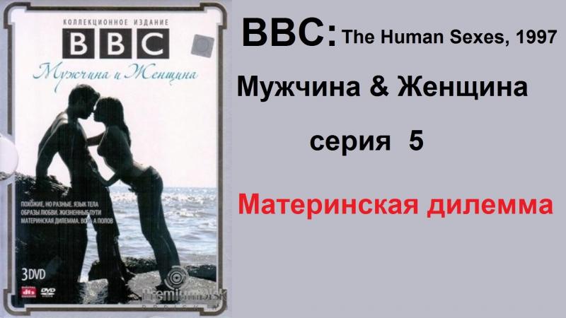 BBC: мужчина и женщина (5 серия). материнская дилемма