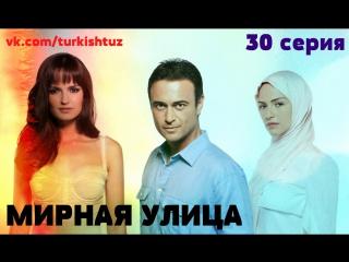 МУ 30 (субтитры)