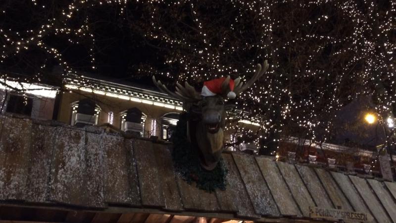 Говорящие лоси - хит рождественской ярмарки 2017 в Осло