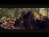 Zirenz - Timeless - HD