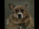 Рисунок собачки