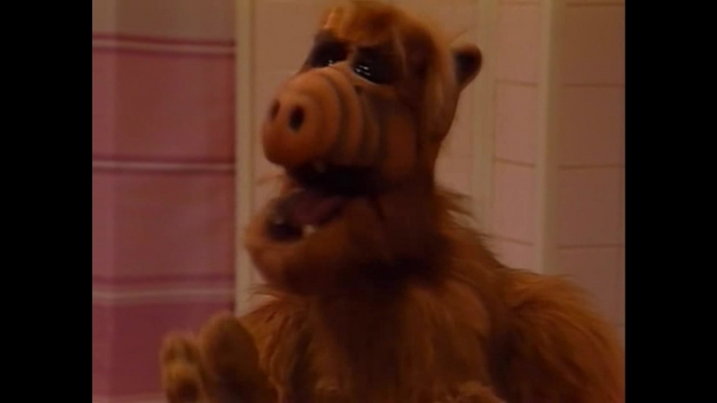 Alf Quote Season 1 Episode 25_Альф и Таракан