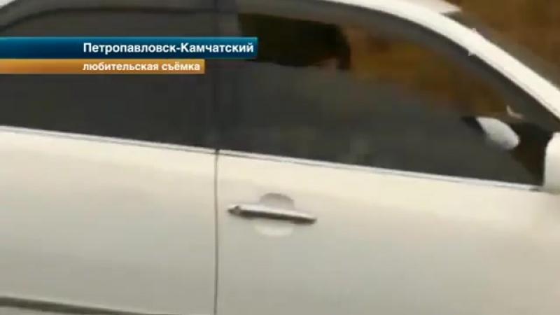 На Камчатке мужчина обстрелял машину, в которой ехала бывшая любовница