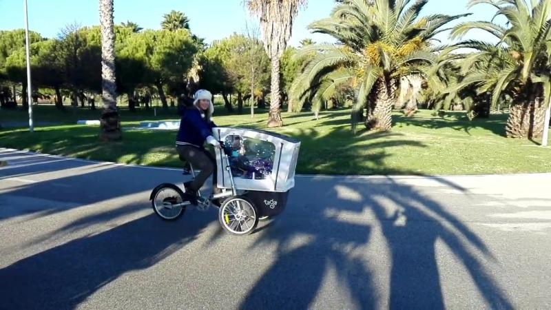 велоколяска Taga bike