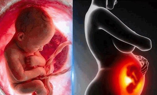 Что значит аборт?