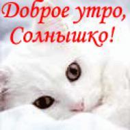Доброе утро, солнышко моё)) Люблю тебя очень)))