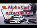 Alpha Cash регистрация на платформе после обновления 31