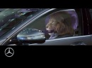 Mercedes-Benz presents: King of the City Jungle | S-Class Commercial