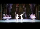 Щелкунчик. Адажио, кода. МОГТ Русский балет 03.03.18