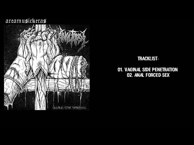 Analtopsy - Vaginal Side (Demo 2016)