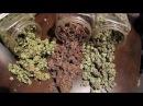 BBC National Geographic Marijuana Drug History Channel Full Documentary