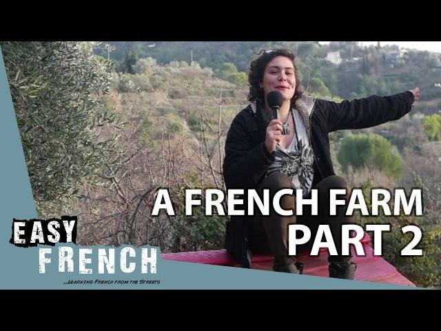 A French farm (2)   Super Easy French 21