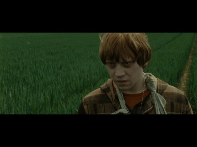 Гарри Поттер и Дары Смерти:Часть 1.Егеря.Подозрения Рона