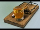 Смертельный выбор! Отравляй и властвуй! - видео о вреде алкоголя и курения