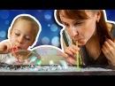 Мыльные Пузыри Челендж ВЫЗОВ ПРИНЯТ - Рецепт веселой игры / CHALLENGE PADDLE BUBBLE