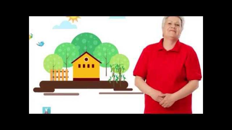 Голова садовая Как избавиться от паутинных клещей