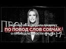 Прокуратура начала проверку по поводу слов Собчак о принадлежности Крыма (Русла