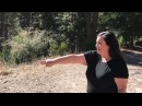 Crestline woman claims she saw Sasquatch in San Bernardino Mountains