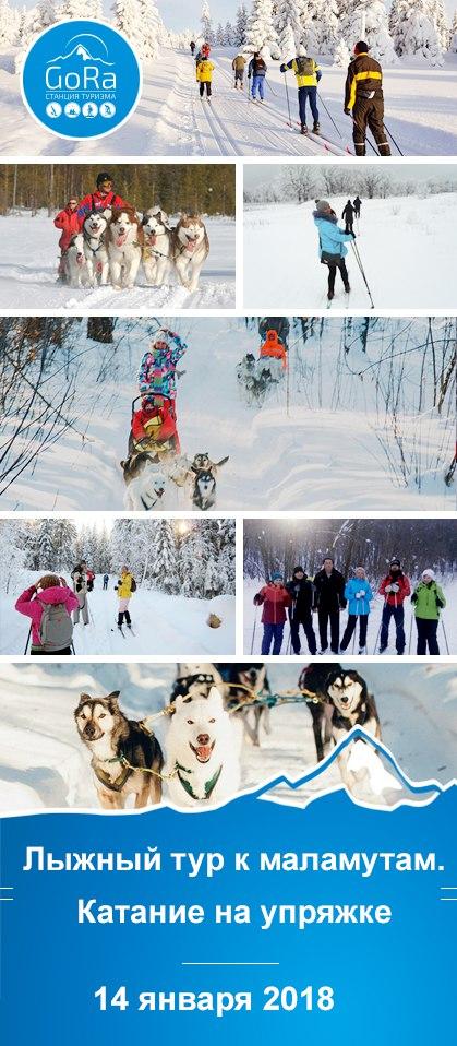 Афиша Самара Поездка к Хаски. Лыжный тур. 14.01.18