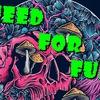 Need for Fun
