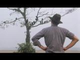 Адриано Челентано базарит с воронами и разруливает ситуацию )))