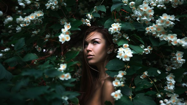 фото из альбома Максима Густарёва №2