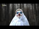 Исследователь 2 сезон Зловещие Клоуны Коулрофобия страх перед клоуном 2017