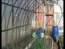 цепочка для подвязки помидоров изПЭТ ленты