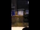 Arthur Arnautov - Live
