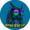 "Взрослый ""Borisov Brain Cup 2017"""