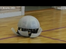 5 Wonderful Robots _ Robotic Kits You will Intend to Buy - Best Robot Toys #14