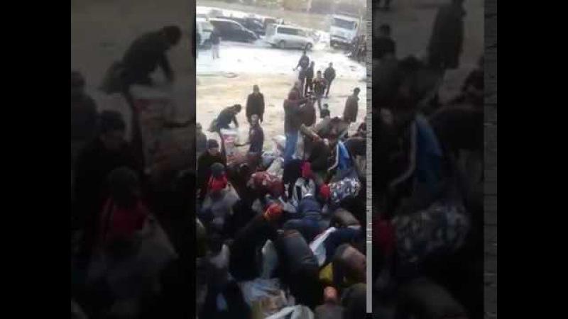 Көмір үшін талас Алматы облысының әкімдігі видеоға қатысты түсінік берді