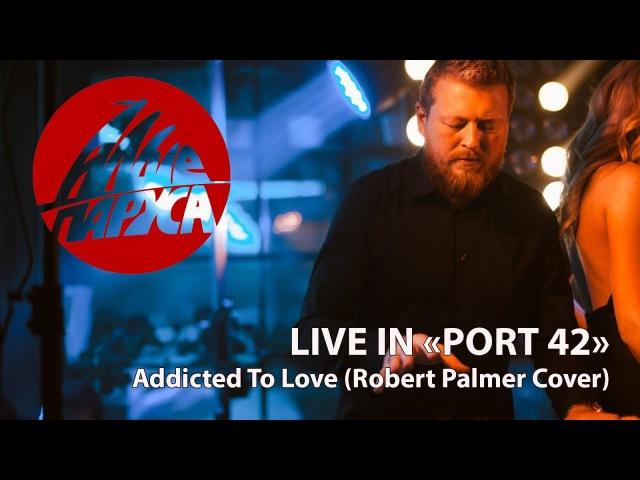 Кавер-группа Алые Паруса - Addicted to Love (Robert Palmer cover)