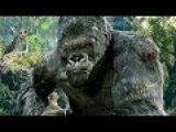 King Kong vs T-Rexes - Fight Scene - Movie CLIP 1080p 60 FPS HD