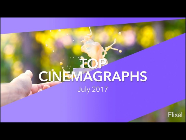 Best Cinemagraphs of the Month - July 2017 | Flixel