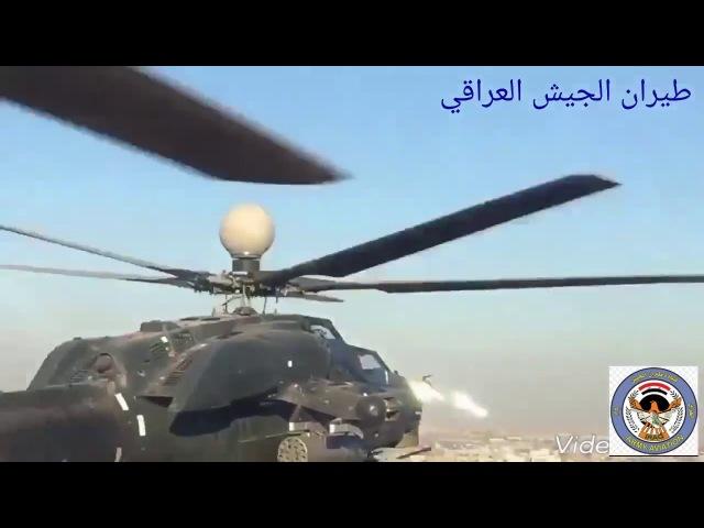 جانب من استعراض ابطال طيران الجيش العراقي بمناسبة يوم النصر الكبير على داعش