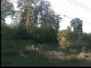 Вид из окна электрички 3 (View from the window. Electric train)3