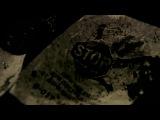 Трейлер проекта «Я не боюсь молчать»