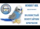Волнистый попугайчик крючком авторский видео МК