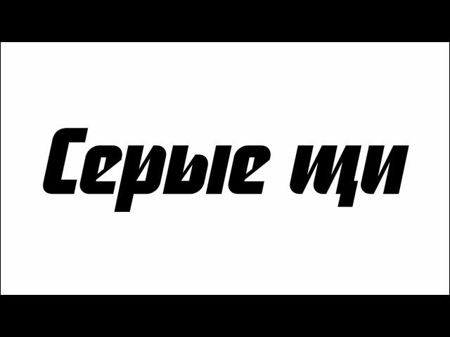 Серые щи. Новгородская экспедиция Еды