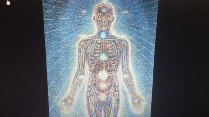 Точка сборки. Каналы в теле человека. Аура