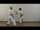 Heian Nidan - Shotokan Kata Bunkai