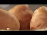 Что стало с человеком, который 8 месяцев ел одну картошку?