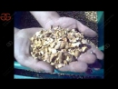 Hazelnut Shell And Kernel Separating Machine With Factory Price