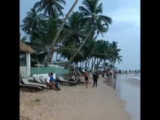 #srilanka #mirissa