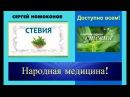 Народная медицина Стевия и Диабет