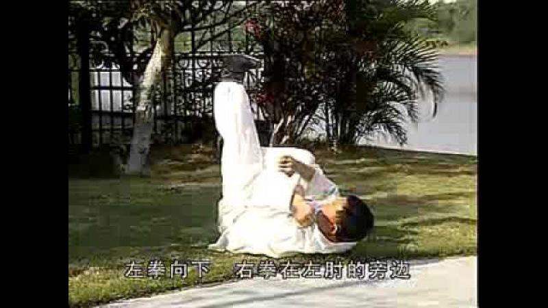猿功拳十二趟实打 攀手野鸟蹬枝 索手火龙献宝 Yuan Gong Quan Shi er Tang Shi Da Pan Shouye Niao Deng Zhi ...
