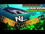 НичегоЛичного vs белая акула Богиня Мс-Сереги