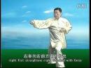 陈小旺讲解 陈氏太极拳十九式 标清
