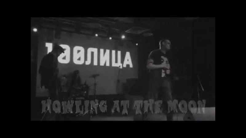 Molly Fancher - Howling at the Moon (live)